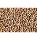 Kizbere - Kişniş - 100 gram